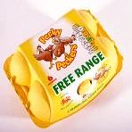 Eggs Free Range med x 6